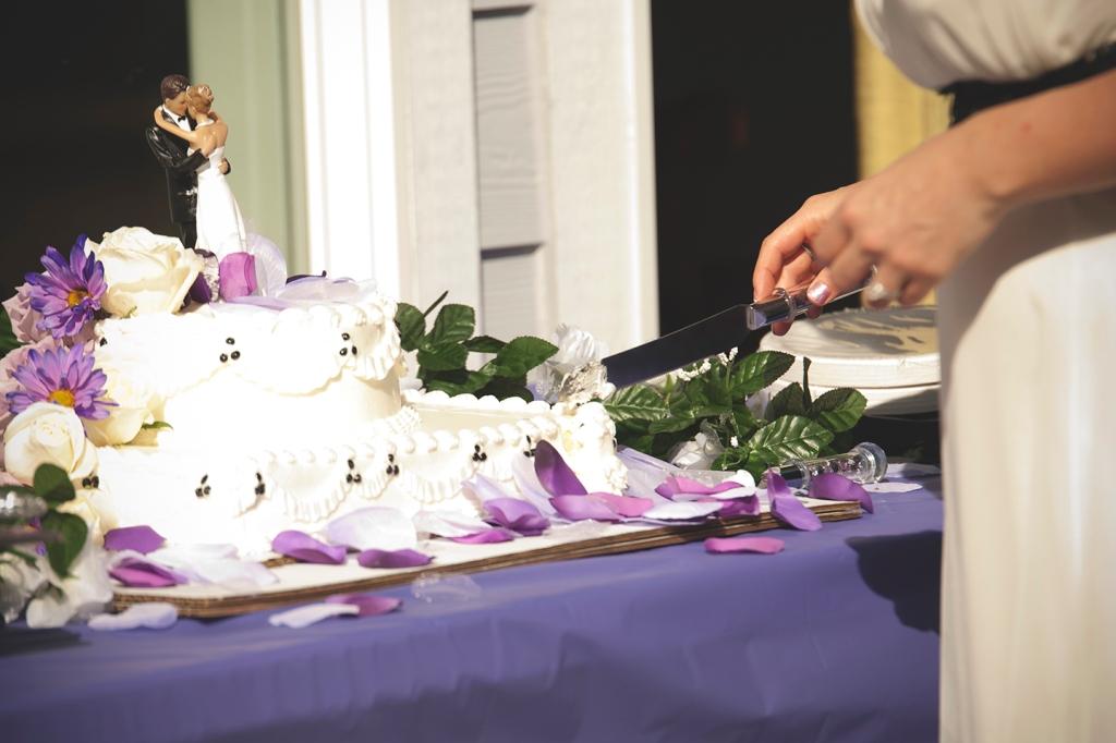 laura_and_rick_wedding_album_Auburn by Jane Speleers photography DSC_0553