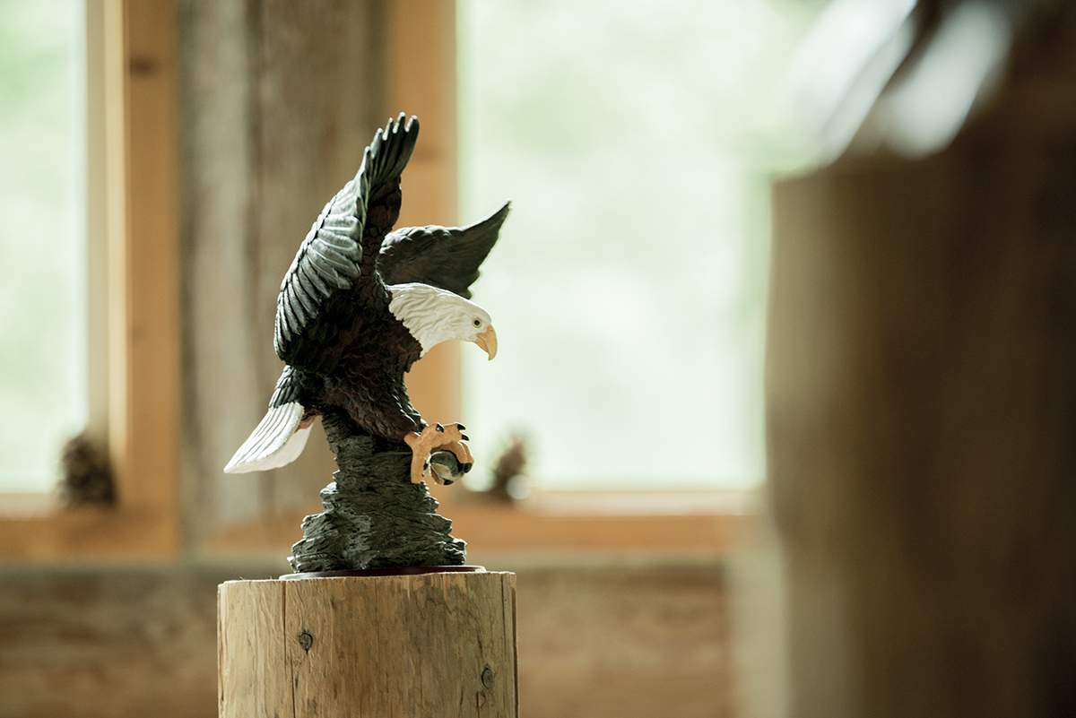 rustic-eagle-at-bridal-cabin-in-the-forest-of-goldbar-washington-DSC_8111
