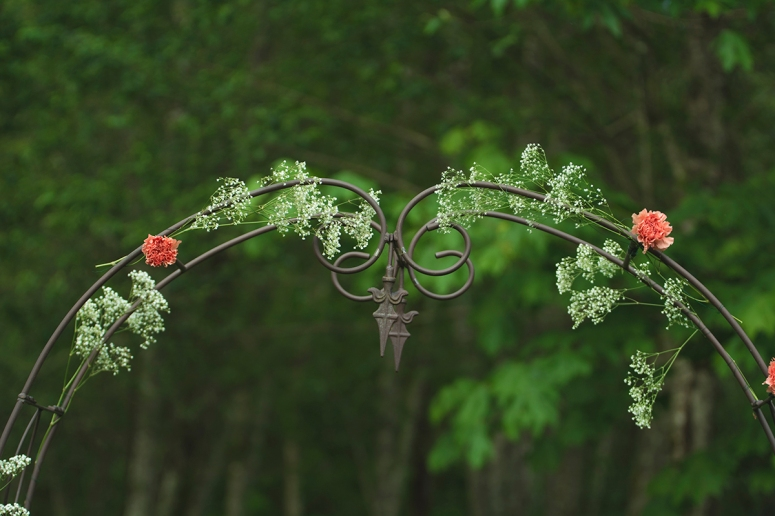 rustic wedding arch for outdoors DSC_1233