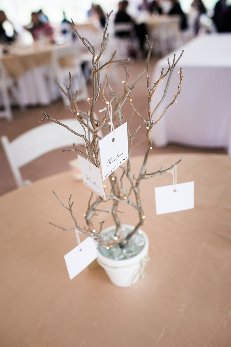 Jane_Speleers_2016_Details_Wedding_Wild_Rose_Estates_Venue_DSC_0065