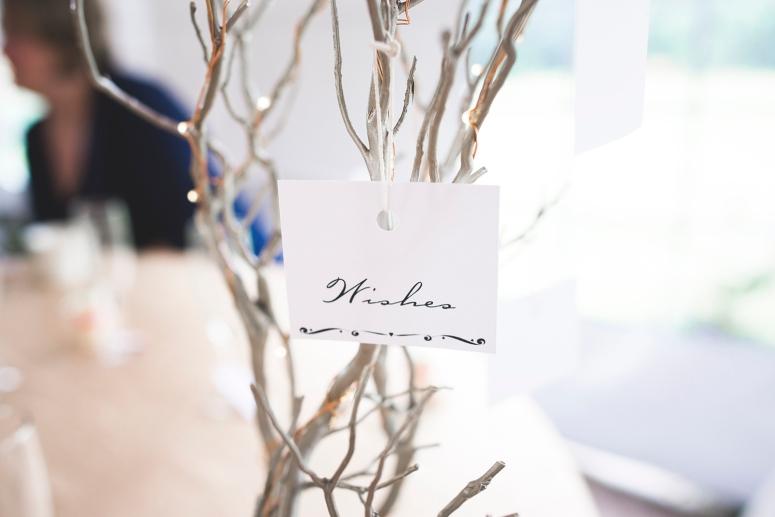 Jane_Speleers_2016_Details_Wedding_Wild_Rose_Estates_Venue_DSC_0070