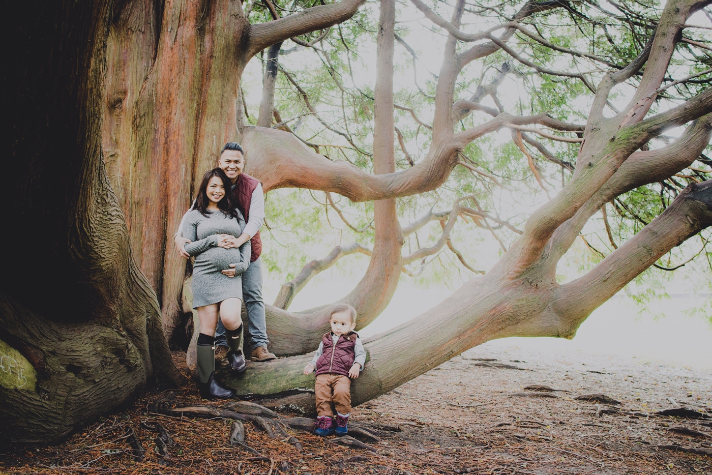 paula_p_maternity_the_royal_squirrel_seattle_family_photographer_2016_dsc_7959