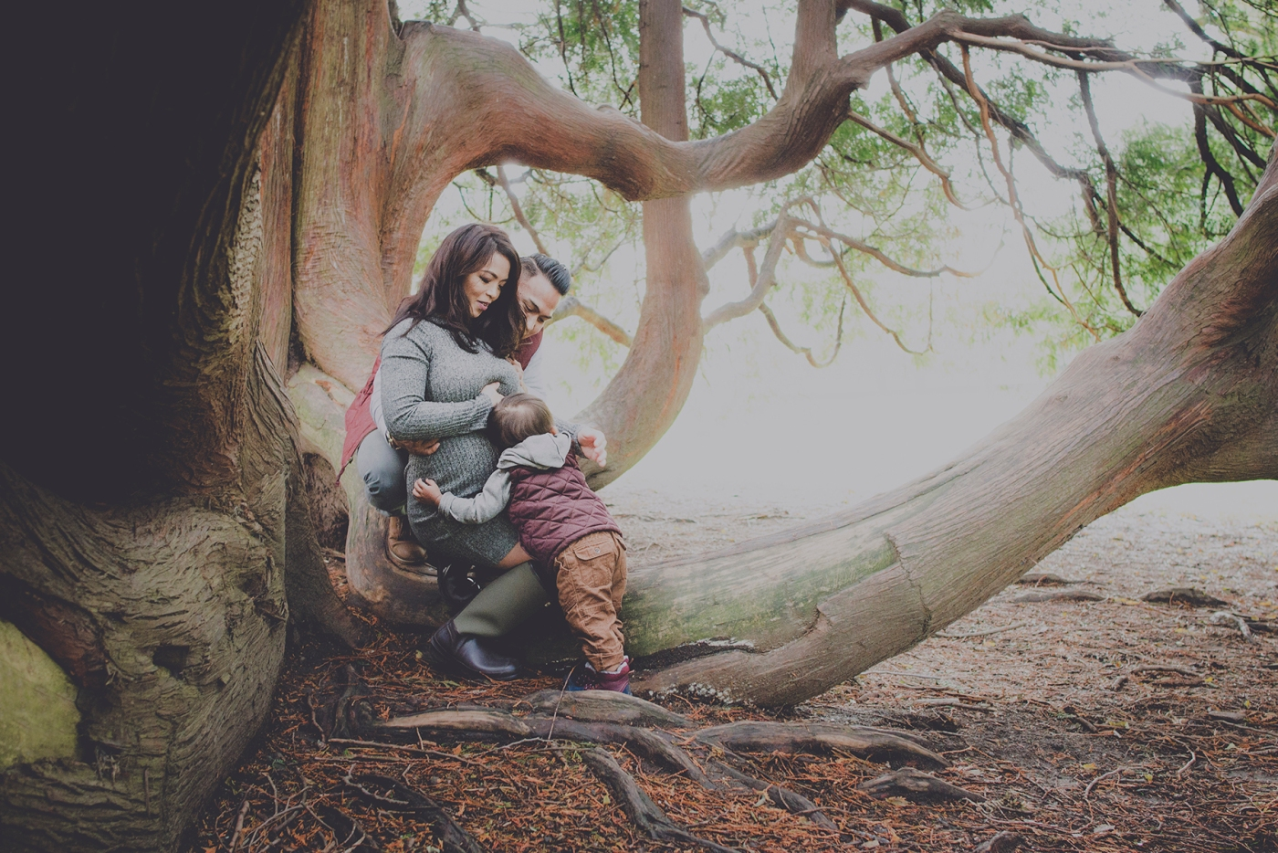 paula_p_maternity_the_royal_squirrel_seattle_family_photographer_2016_dsc_7960